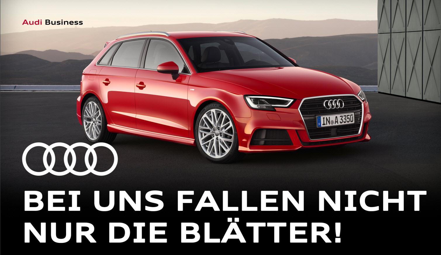 Anzeige: Audi Business - bei uns fallen nicht nur die Blätter!