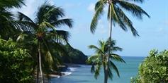 Impressionen Guadeloupe und Dominika (Quelle: Privat)
